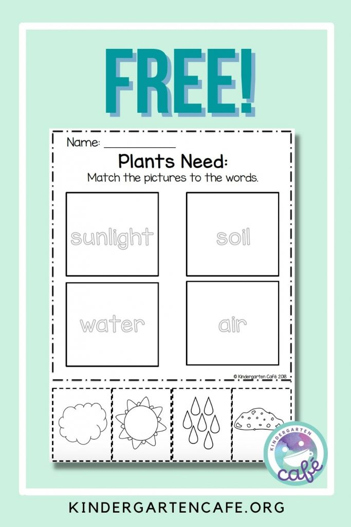 free plant activity for kids