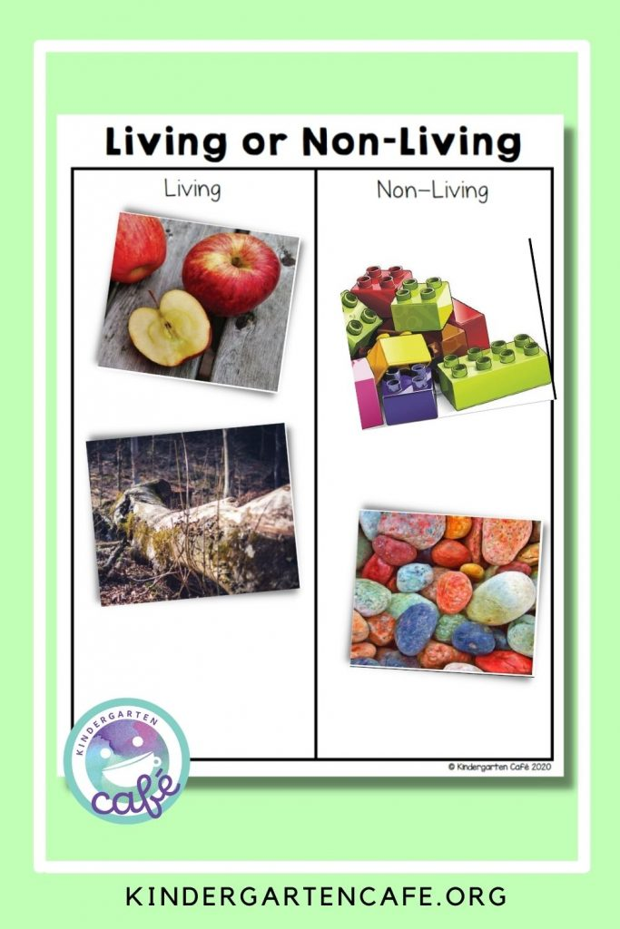 Teaching Living and Non Living Things